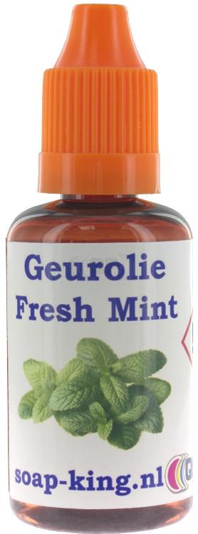 Perfume / fragrance oil Fresh mint 30ml