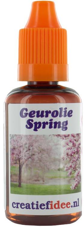 Perfume / fragrance oil Spring 30ml
