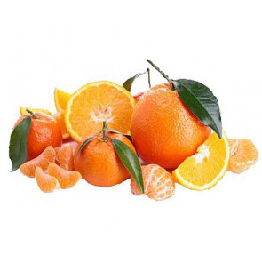 Perfume / fragrance oil Citrus fruits 500ml (Decoration)